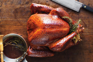 turkey-turkey