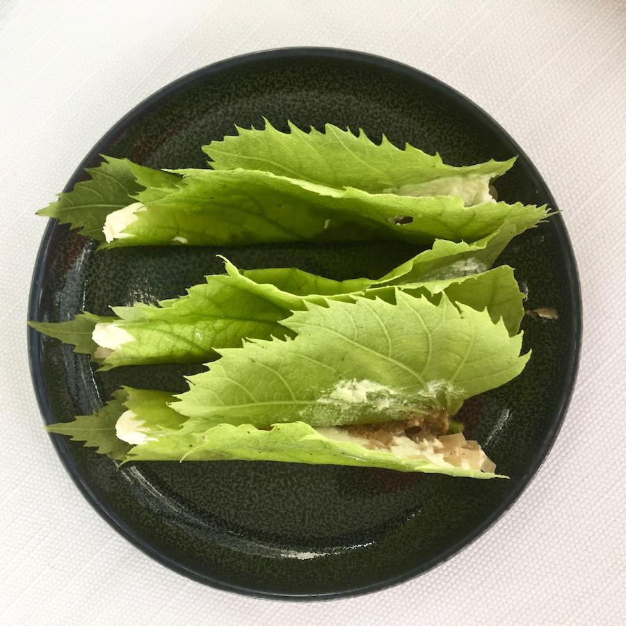 hisa-franko-lipa (1)