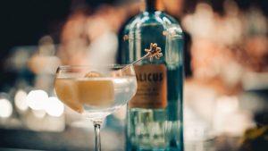 italicus-dezman-martini