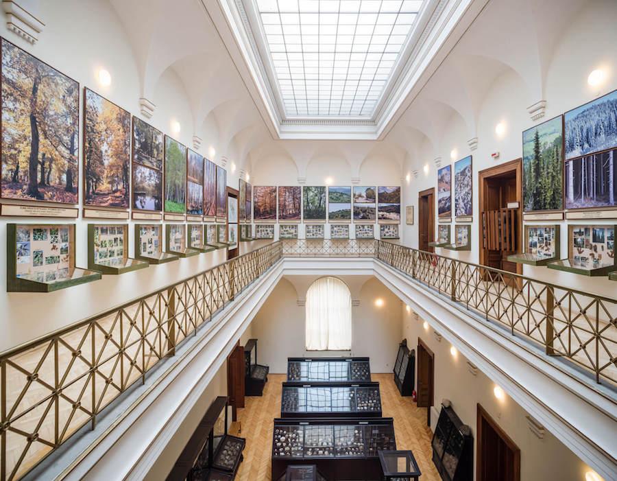 zemaljski-muzej