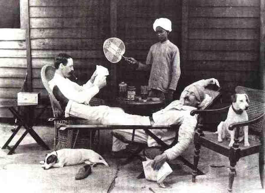 gin povijest