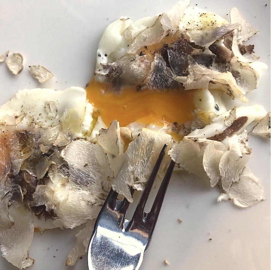 tartufi-jaja-plavi-podrum