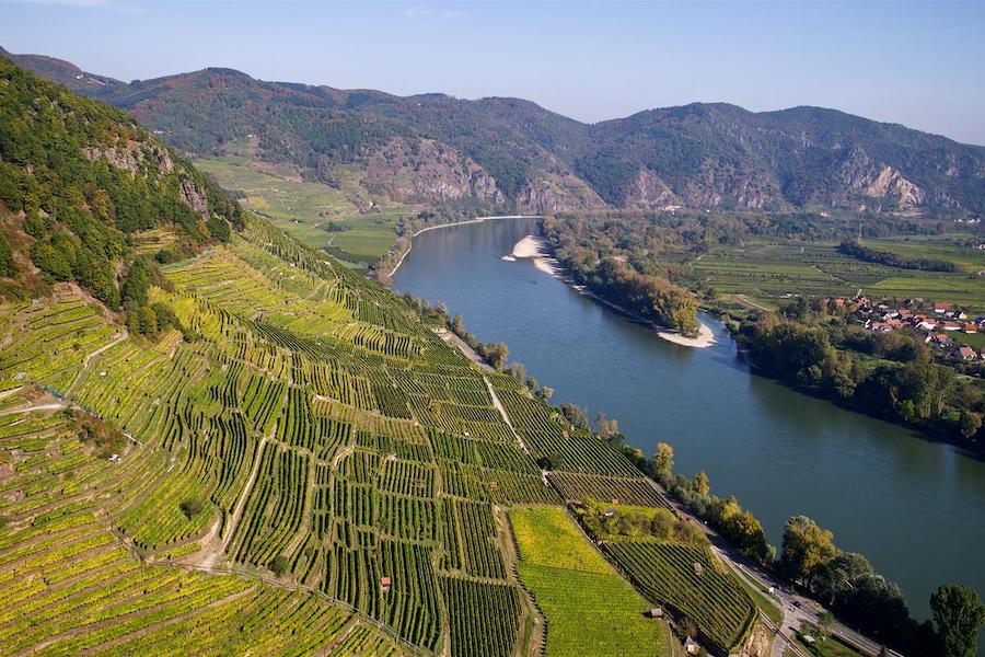 domane-wachau-vinogradi