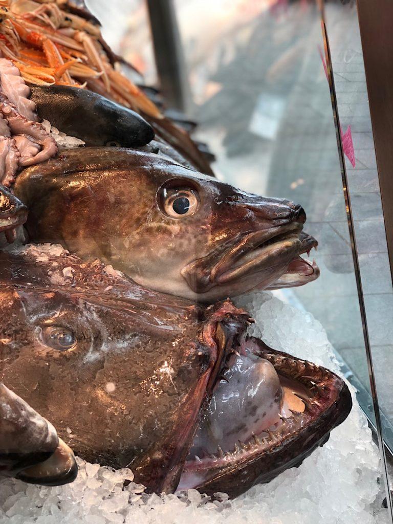 mjesta za velike ribe