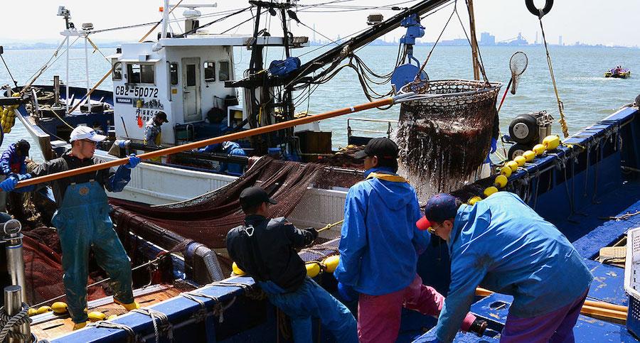 japan-ribari