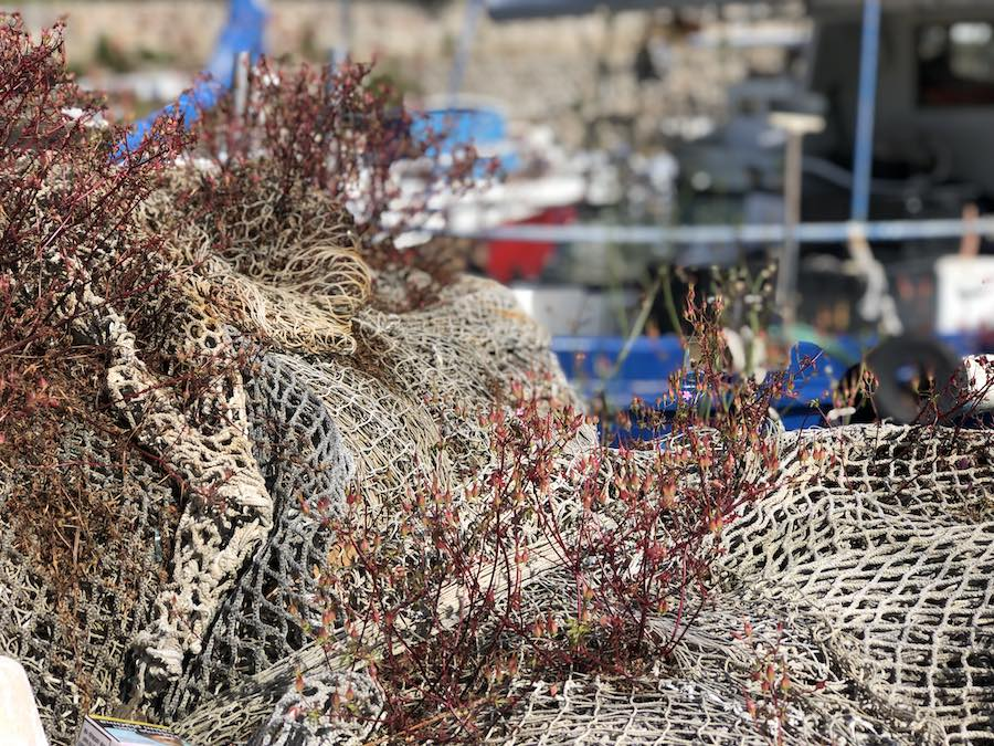 ribari-mreze