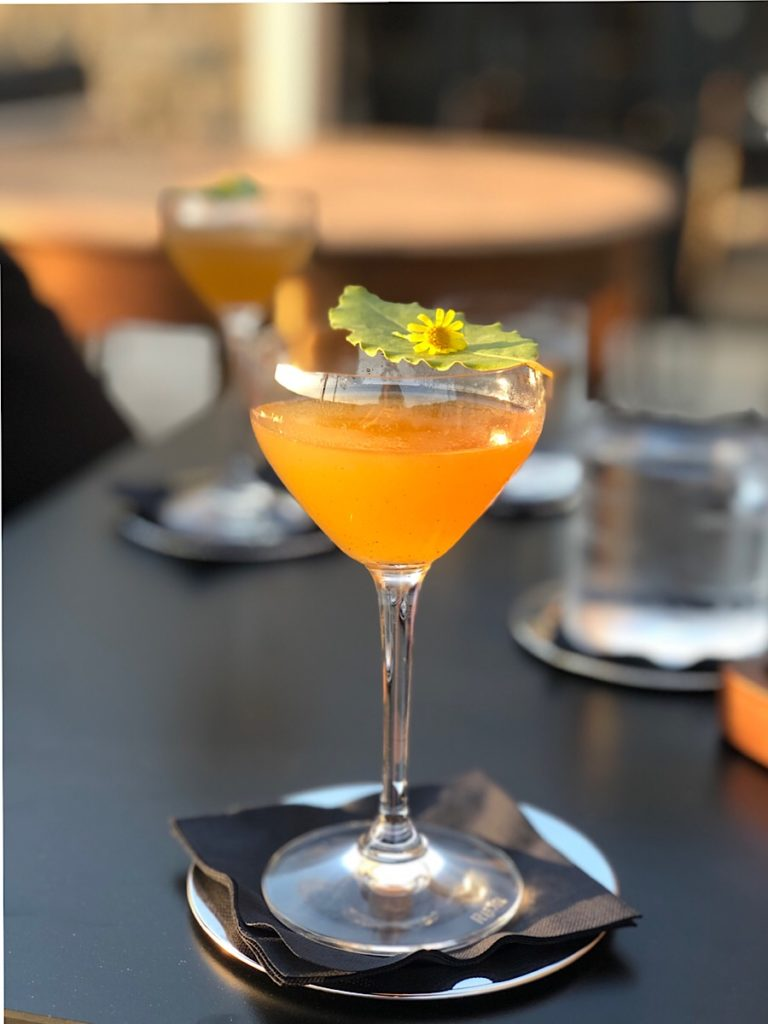 noel-buje-koktel
