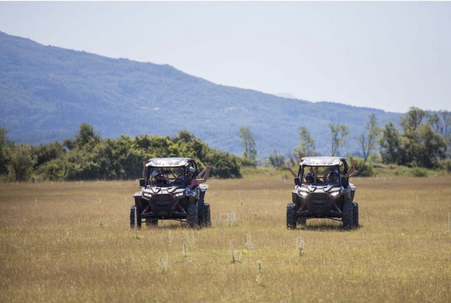 safari-plain