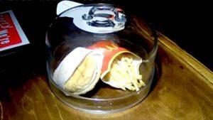 burger-island