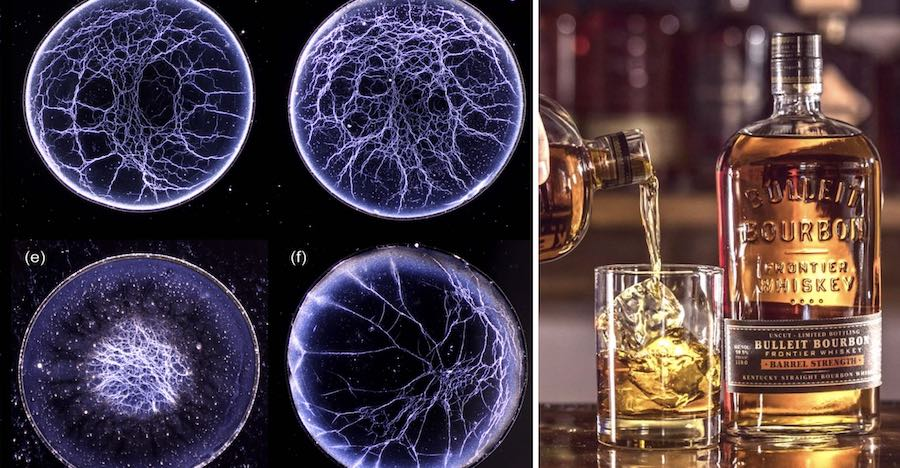 whiskey-webs
