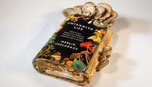 knjiga-gljive