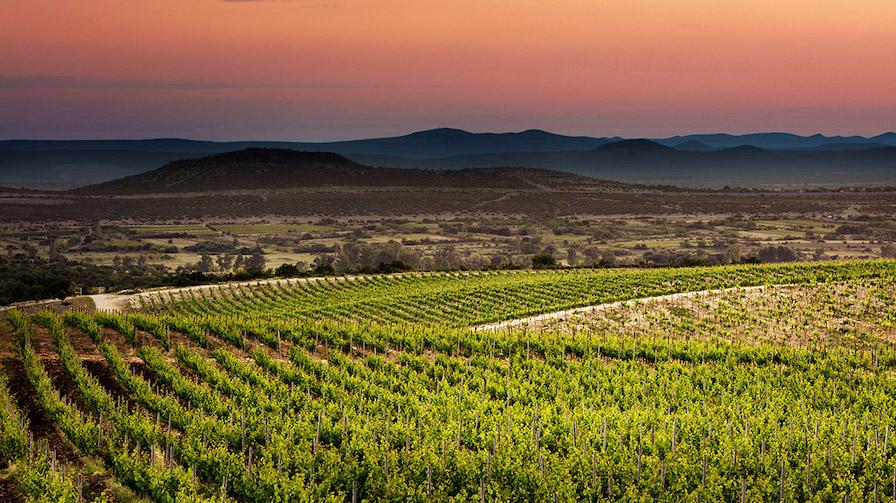 korlat-vinograd-zalazak