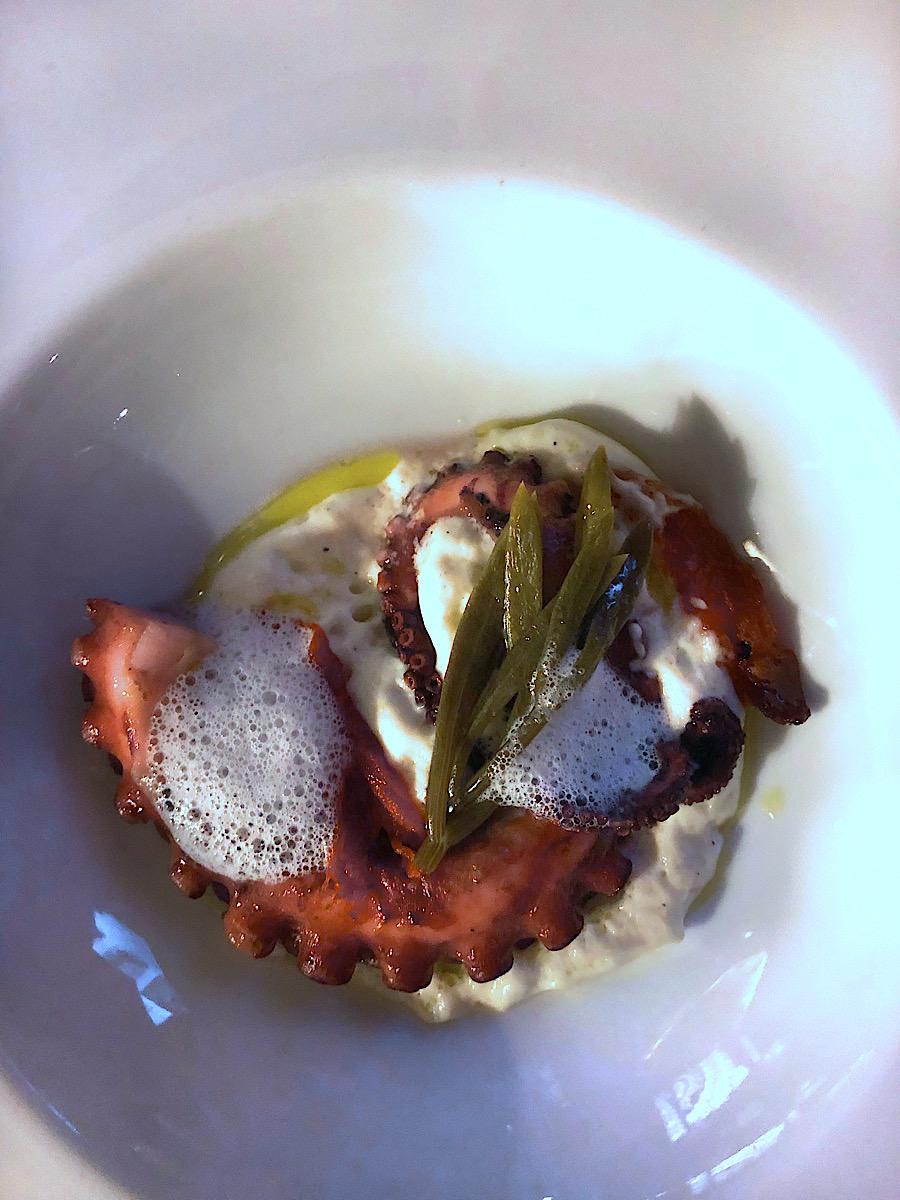 spinnaker-2020-hobotnica