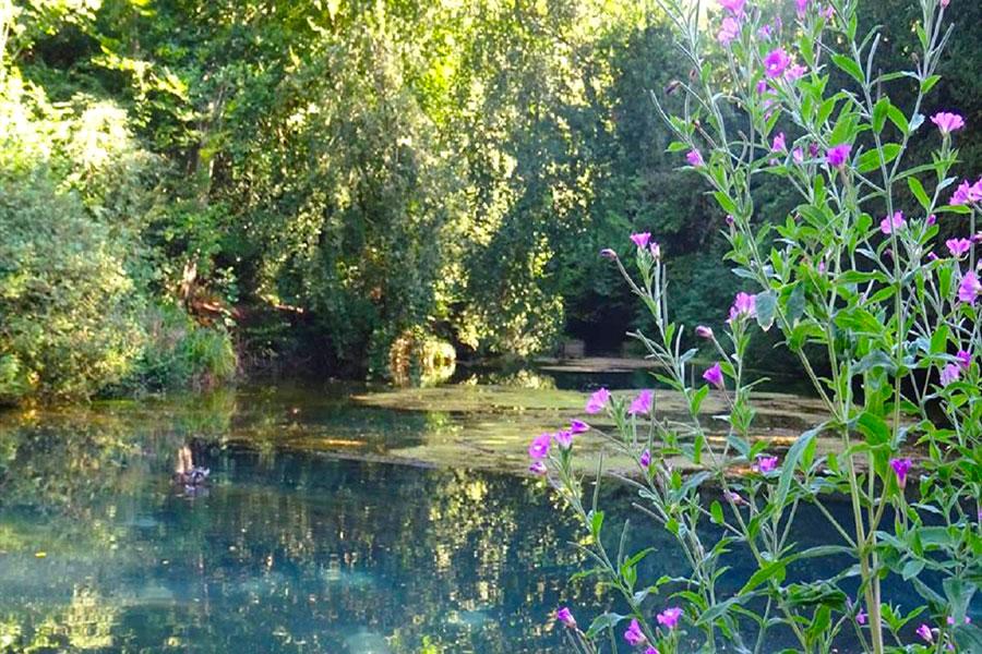 silent-pool-jezero