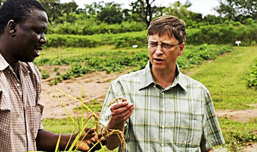 bill-gates-poljoprivreda